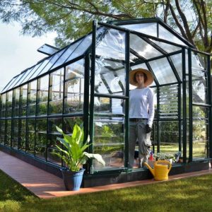 Green Resin Greenhouse