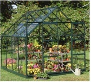 Halls Greenhouses Horticultural Short Pane Magnum Greenhouse