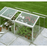 Halls Greenhouses Jumbo Cold Frame with Horticultural Glass