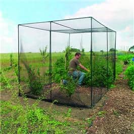 The Gardman Fruit Cage What Shed