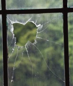 Storm Window Greenhouse