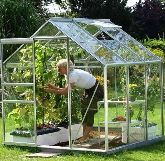 Vitavia Venus 3800 Silver Framed Greenhouse
