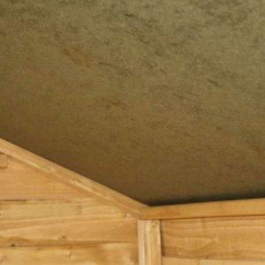 6 x 4 Tongue & Groove OSB Windowless Shed Sustainable Homes Compliant Ceiling