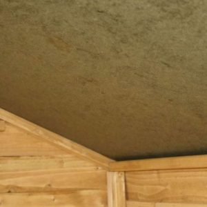 8 x 6 Tongue & Groove Apex Shed Sustainable Homes Code Compliant Overall Ceiling