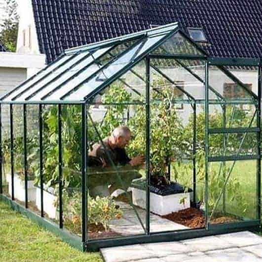 10 x 6 Vitavia Venus 6200 Green Apex Greenhouse
