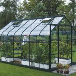 14 x 8 Vitavia Saturn 11500 Green Apex Greenhouse