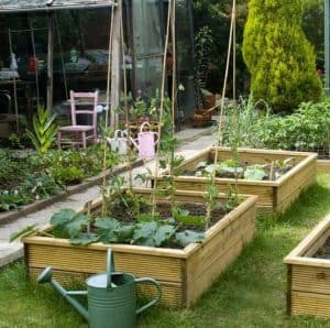 1500 x 900 x 300 Waltons Standard Wooden Raised Bed