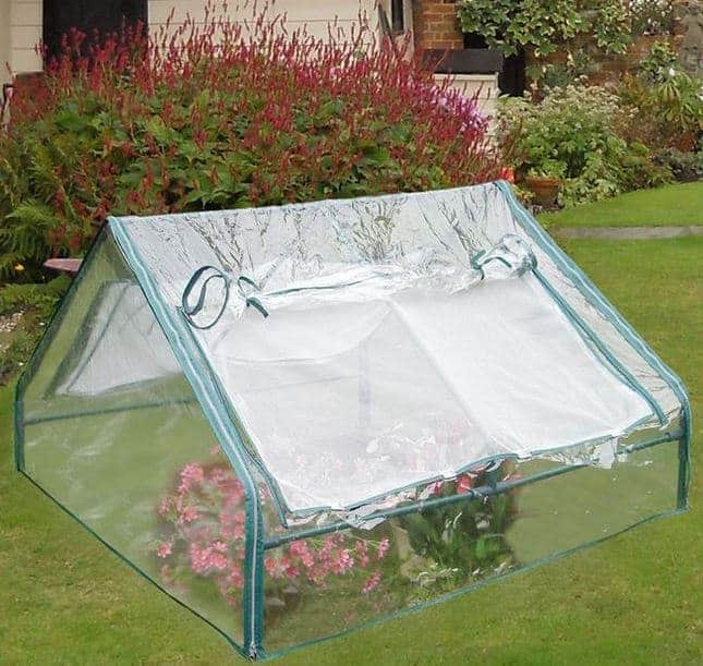 4\' x 4\' Large Apex PVC Cold Frame - What Shed