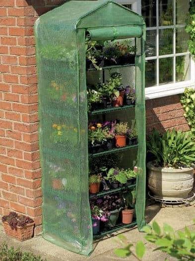 5 x 3 Gardman Compact Walk-in-Greenhouse