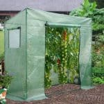 6' x 6' Nison Heavy Duty PE Tomato Growhouse