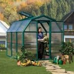 6 x 6 Rion Eco Grow Greenhouse