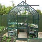 6 x 6 Vitavia Orion 3800 Green Apex Greenhouse