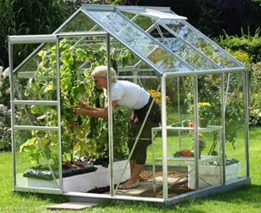 6 x 6 Vitavia Venus 3800 Silver Apex Greenhouse