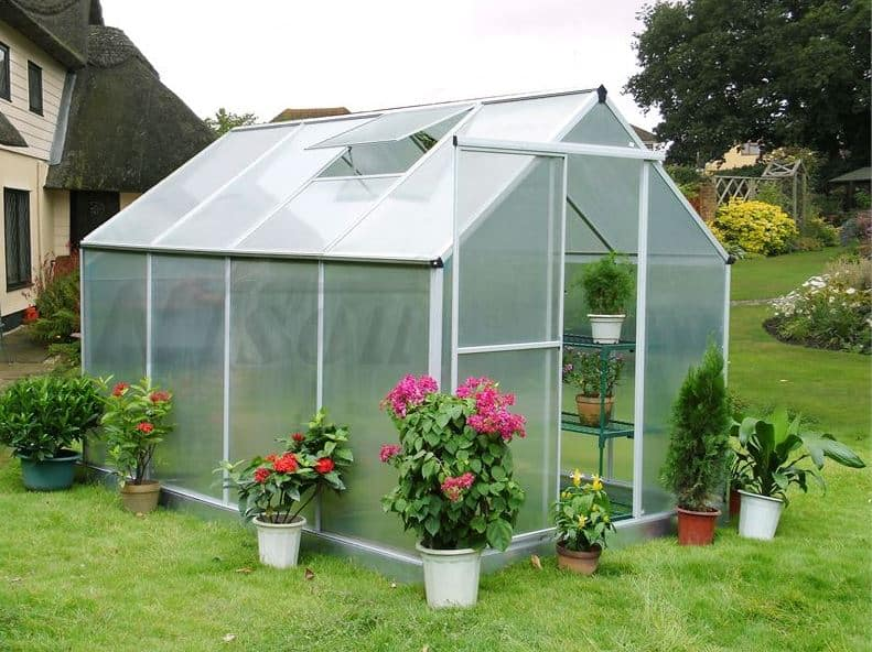 8' x 6' Nison Natural Polycarbonate Greenhouse