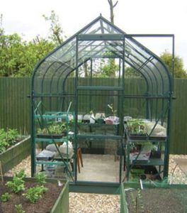 8 x 6 Vitavia Orion 5000 Green Apex Greenhouse