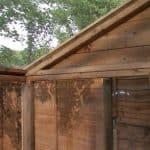 8 x 6 Waltons Evesham Wooden Greenhouse Corner Shed