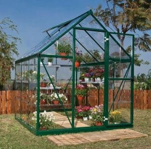 Palram Harmony 6 x 6 Green Polycarbonate Greenhouse