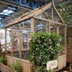 6 x 6 Waltons Pressure Treated Wooden Greenhouse Unpainted