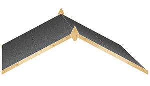 Apex Roof