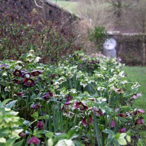 Country Garden UK