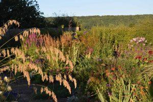 John Grimshaw's Garden Diary