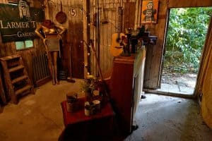 Songs From The Shed