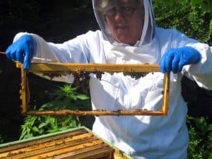 Bee Keeper Linda
