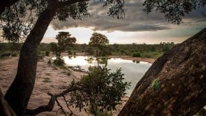 Eco Friendly Travel Africa