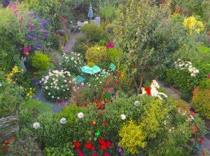 Richard Jacksons Garden