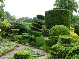 Vialii Garden Design