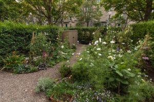 Edinburgh Garden Diary